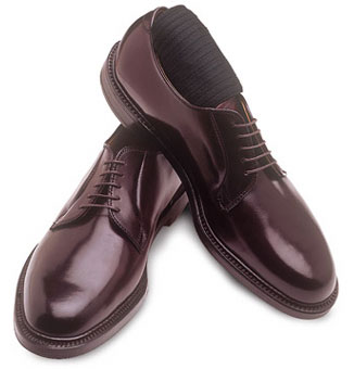 Alden cordovan bluchers