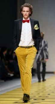 Etro goldenrod cords