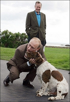 Putin's black shoes and brown suit